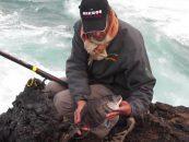 Vídeo de pesca: Sargos a boya