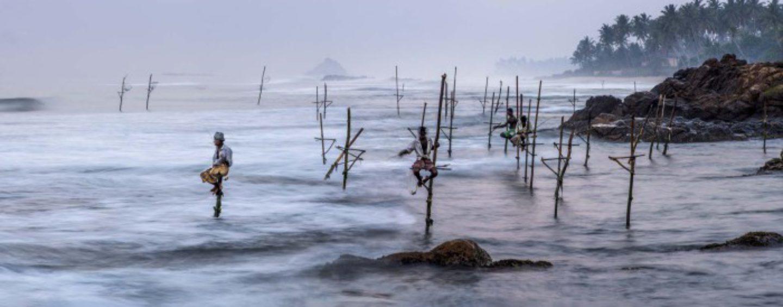 El origen de la pesca, breve historia sobre la evolución de la pesca