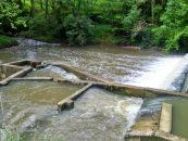 Los ríos salmoneros de España (XXVI): El salmón en el río Lea, una historia de esperanza e incertidumbre