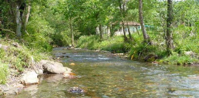 Los ríos salmoneros de España (XXVIII): el milagro del regreso y reproducción del salmón en el río Oiartzun