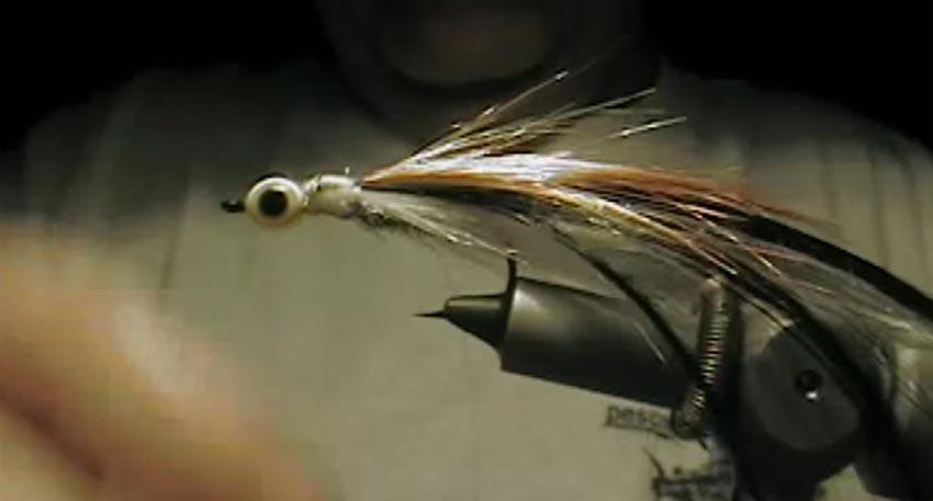 lucio-streamer