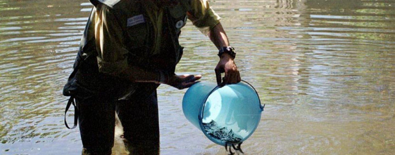 Pezcador al día, principales noticias de pesca (mayo 2016, 2)