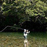 Pezcador al día, principales noticias de pesca, julio 2018 3