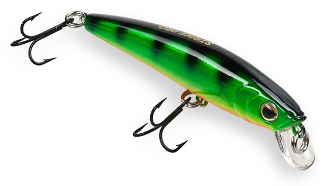 arc-minnow-2