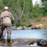 Pezcador al día, principales noticias de pesca (Julio 2016, 4)