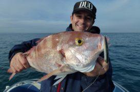 La pesca de brecas, como, donde y con qué