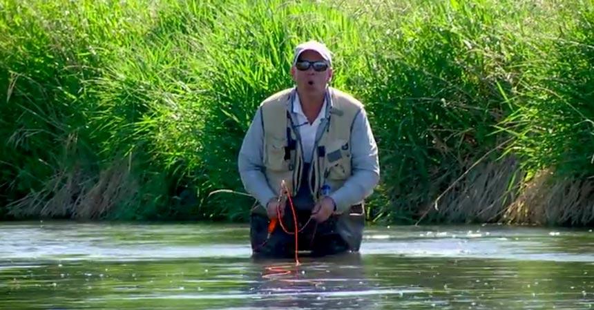 pesca-mosca-verano
