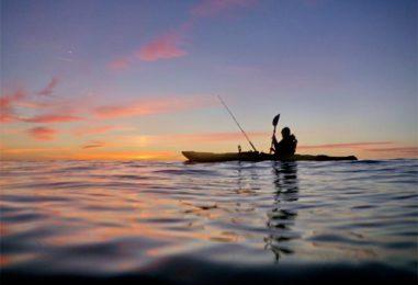 Pezcador al día, principales noticias de pesca (Noviembre 2018, 1)