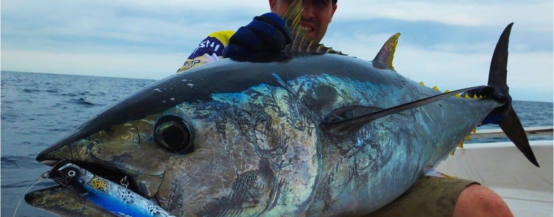 Adiós 2016, las principales noticias de pesca deportiva de un año complicado para los pescadores