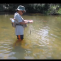 Pesca de bogas en Otoño