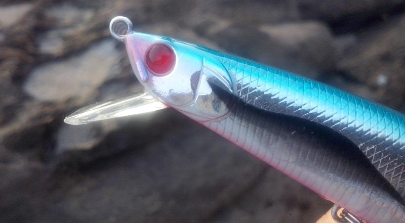 realismo en la cabeza los señuelos de pesca
