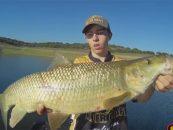 Video de pesca: Otoño en Cijara