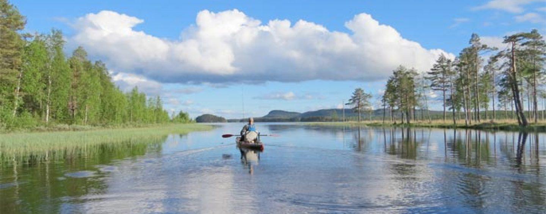 Destinos de pesca: La pesca en Suecia en sus ríos y lagos