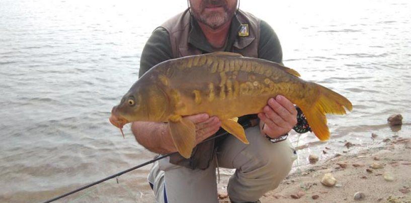 España: Paraíso de la pesca a mosca