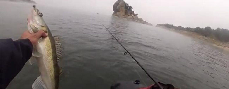 Claves para pescar luciopercas en invierno