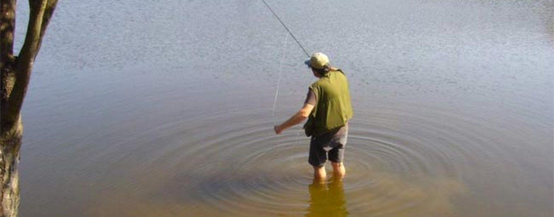 Pezcador al día, principales noticias de pesca (diciembre 2016, 1)