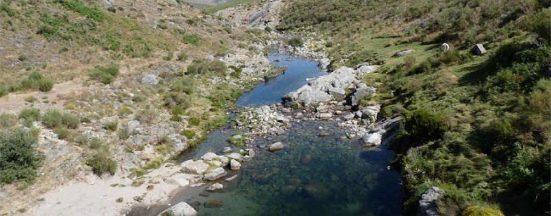 Los ríos trucheros de España (V): El río Barbellido (Ávila)