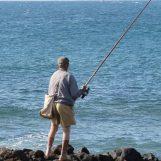 Pezcador al día, principales noticias de pesca (octubre 2017, 2)