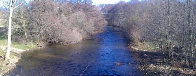 Los mejores ríos trucheros de España (XI): El río Pedroso