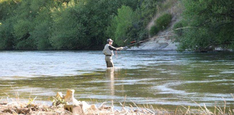 La seguridad en la pesca: Cómo vadear correctamente y de forma segura