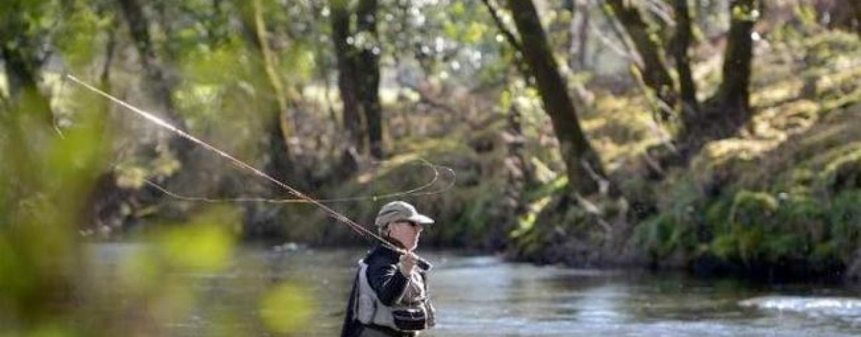 Pezcador al día, principales noticias de pesca (marzo 2017,4)