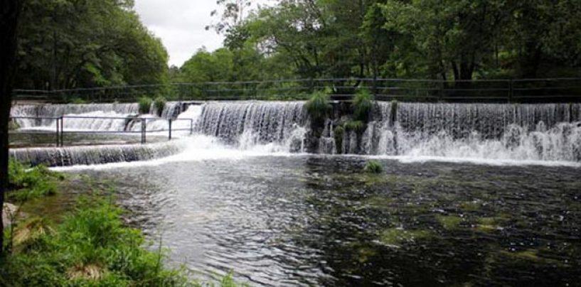Los mejores ríos trucheros de España (XIII): El río Verdugo