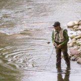 Pezcador al día, principales noticias de pesca (Mayo 2017, 5)