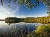 La pesca en Finlandia de especies de interior (I)
