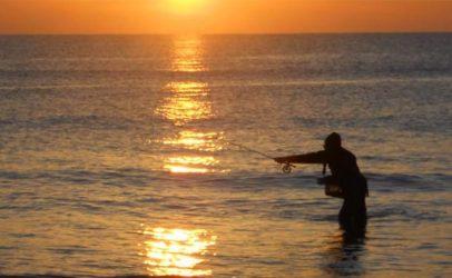 Vídeo de pesca: Lubinas a mosca