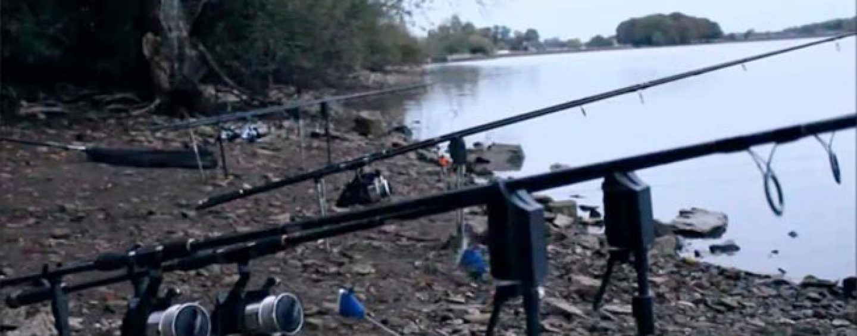 Por qué el otoño es un gran momento para la pesca de carpas