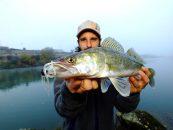 Otoño y pesca de luciopercas: un momento clave