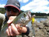 Estrategias para pescar a spinning en cotos intensivos