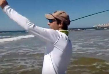 Vídeos de pesca: Corvinas a mosca