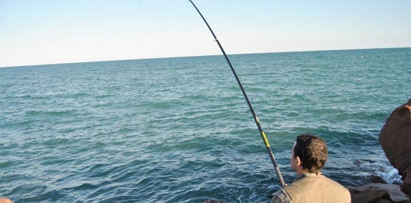 Pezcador al día, principales noticias de pesca (noviembre 2017, 1)