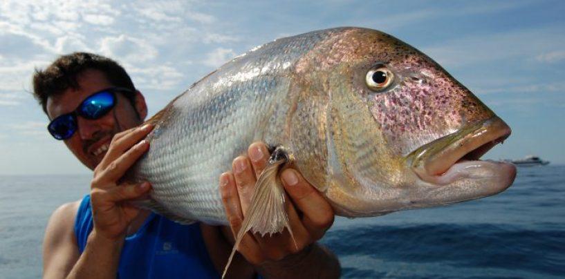 El reciclaje del pescador: cómo adaptarse a cambios cada vez más vertiginosos