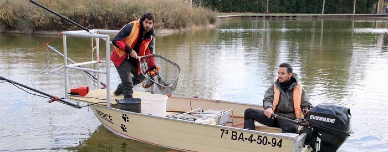 Pezcador al día, principales noticias de pesca (Diciembre 2017, 5)