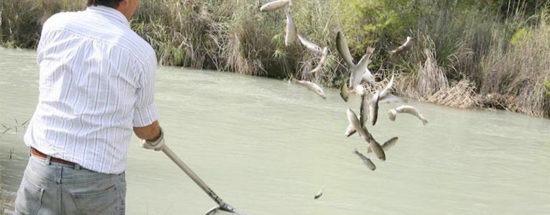Pezcador al día, principales noticias de pesca (enero 2018, 3)