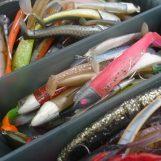La eterna pregunta: ¿Cuántos señuelos son suficientes en la pesca spinning?