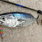 Claves para la correcta elección de las líneas de pesca
