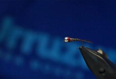 Video de pesca: Montar una ninfa para reo