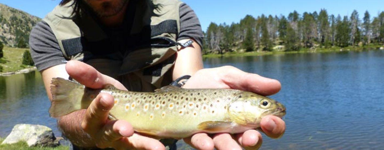Consejos básicos para la pesca en alta montaña