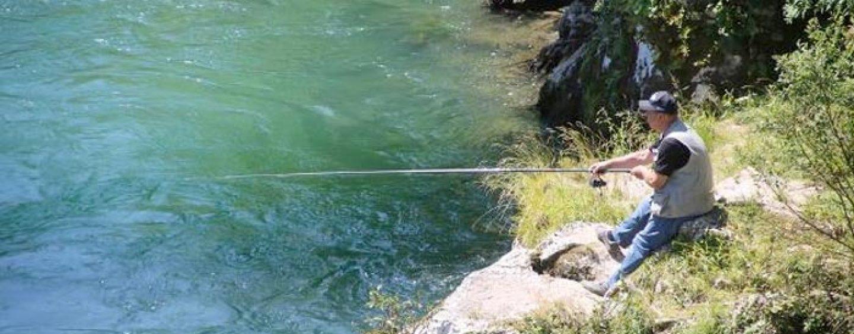 Pezcador al día, principales noticias de pesca (Junio de 2018, 4)