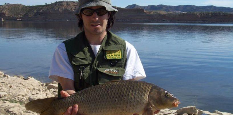 Técnicas, especies y consejos para la pesca de ciprínidos a spinning
