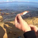 Vídeo de pesca: Aprender a pescar calamares desde costa