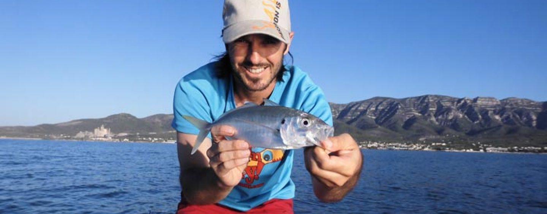 Pesca de jurelas a spinning en verano: dónde, cuándo y cómo capturarlas