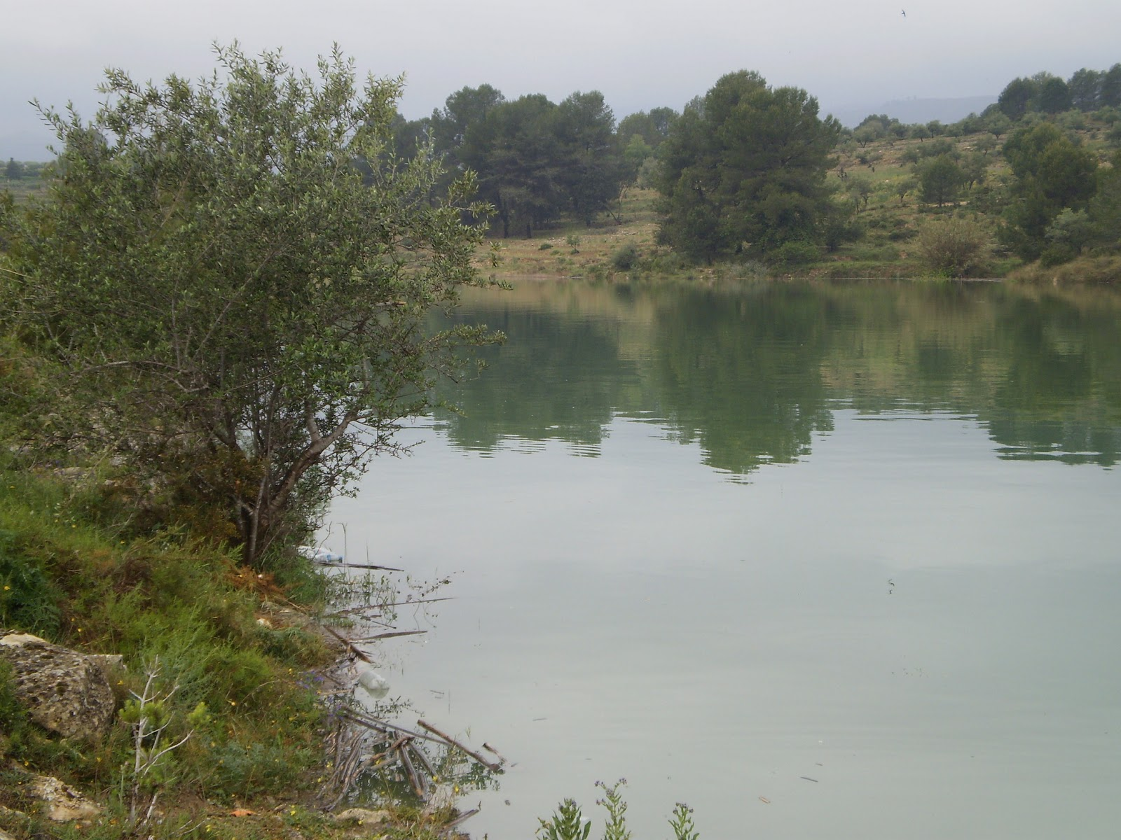Embalse de Bellús