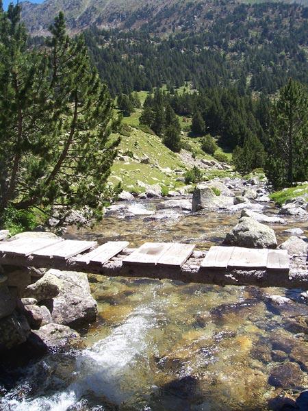 pesca a spinning en ríos de alta montaña
