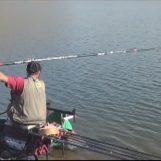 La pesca en el embalse de La Serena y sus peces