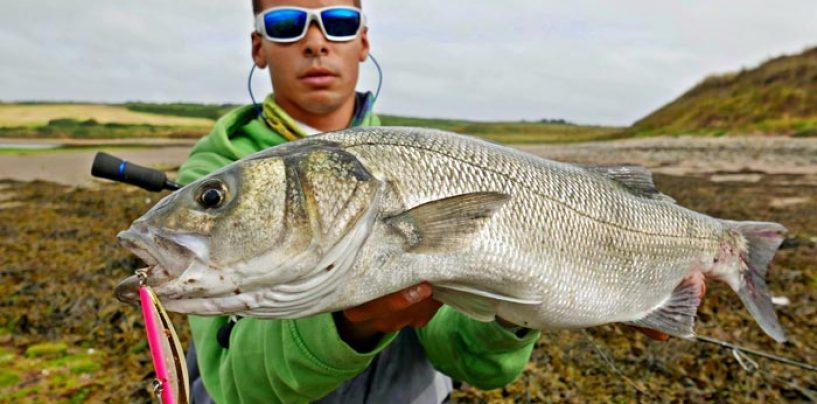 Invierno, tiempo de pesca de lubinas