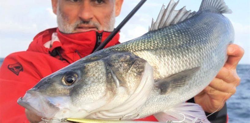 Tide Minnow Slim 175 SP de DUO: Una novedad muy esperada para los pescadores de spinning
